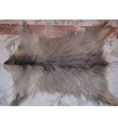 Goat skin rug : natural gray