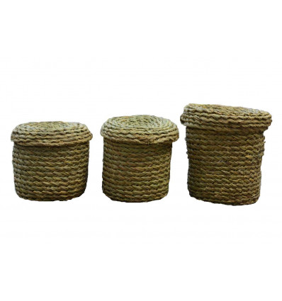 Wicker Handwoven Storage Baskets